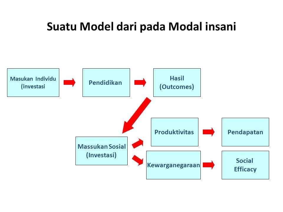Masukan Individu (investasi Pendidikan Hasil (Outcomes) Massukan Sosial (Investasi) ProduktivitasPendapatan Kewarganegaraan Social Efficacy Suatu Mode
