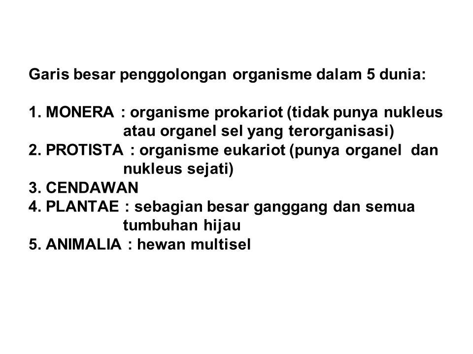 Garis besar penggolongan organisme dalam 5 dunia: 1. MONERA : organisme prokariot (tidak punya nukleus atau organel sel yang terorganisasi) 2. PROTIST
