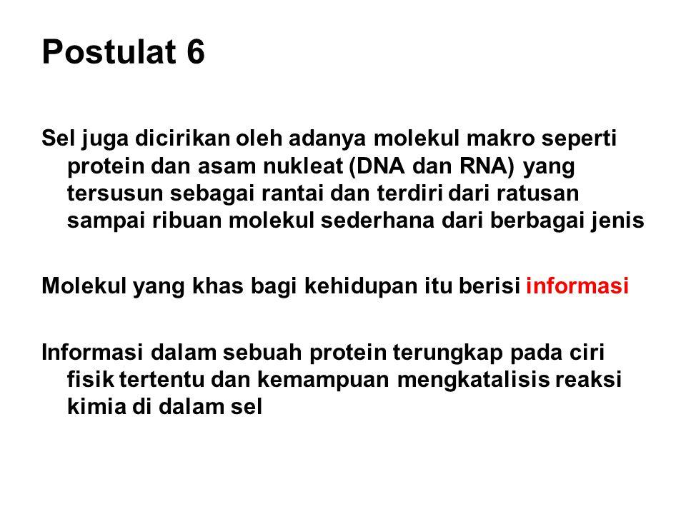 Postulat 6 Sel juga dicirikan oleh adanya molekul makro seperti protein dan asam nukleat (DNA dan RNA) yang tersusun sebagai rantai dan terdiri dari r