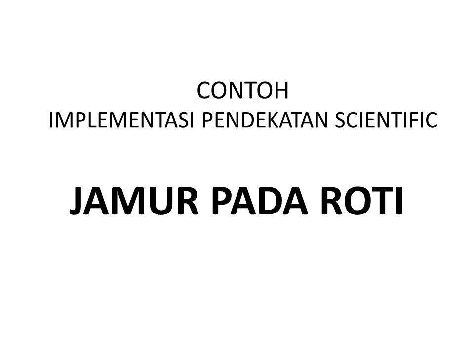 CONTOH IMPLEMENTASI PENDEKATAN SCIENTIFIC JAMUR PADA ROTI