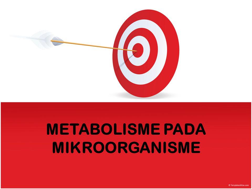 METABOLISME PADA MIKROORGANISME