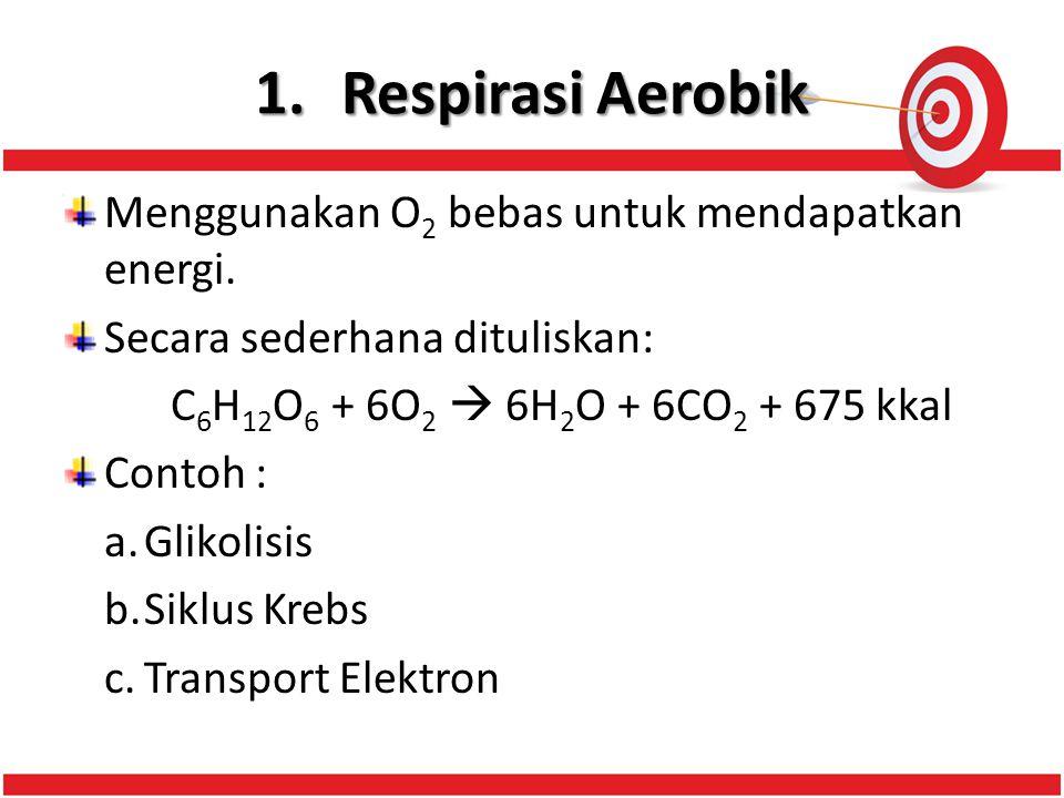 1.Respirasi Aerobik Menggunakan O 2 bebas untuk mendapatkan energi.