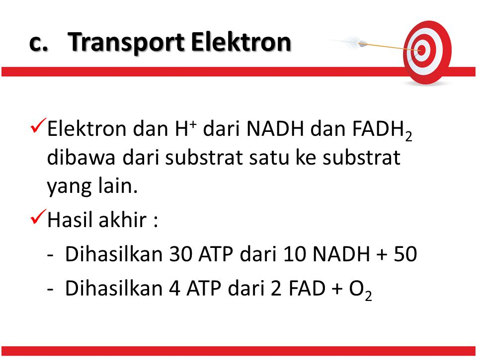 c.Transport Elektron Elektron dan H + dari NADH dan FADH 2 dibawa dari substrat satu ke substrat yang lain.