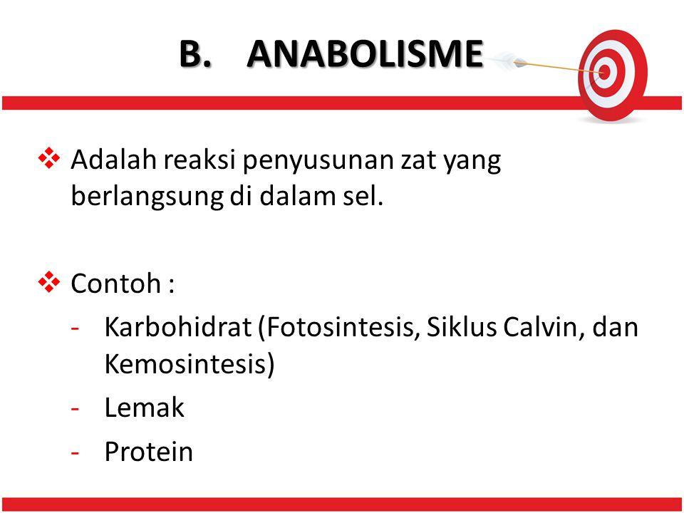 B.ANABOLISME  Adalah reaksi penyusunan zat yang berlangsung di dalam sel.