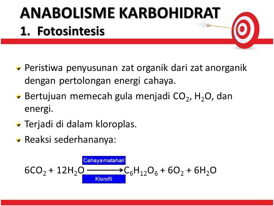 ANABOLISME KARBOHIDRAT 1.Fotosintesis Peristiwa penyusunan zat organik dari zat anorganik dengan pertolongan energi cahaya.