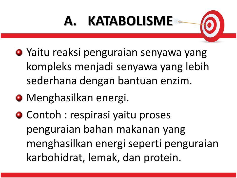 A.KATABOLISME Yaitu reaksi penguraian senyawa yang kompleks menjadi senyawa yang lebih sederhana dengan bantuan enzim.