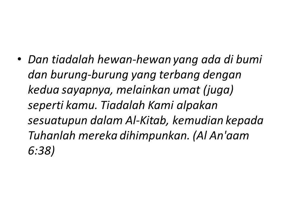 Perumpamaan QS Al Waqiah 56 : 51-55: Kemudian sesungguhnya kamu hai orang-orang yang sesat lagi mendustakan, benar-benar akan memakan pohon zaqqum, dan akan memenuhi perutmu dengannya.