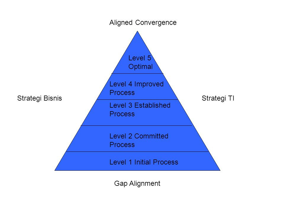 Level 1 Initial Process Level 2 Committed Process Level 3 Established Process Level 4 Improved Process Level 5 Optimal Aligned Convergence Strategi TI Gap Alignment Strategi Bisnis