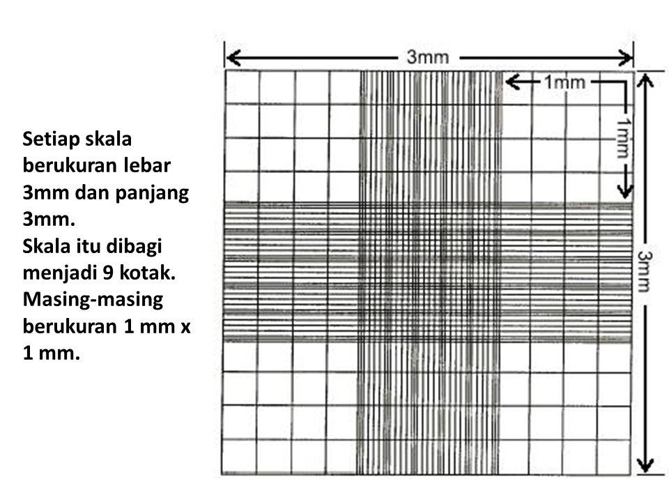 Setiap skala berukuran lebar 3mm dan panjang 3mm. Skala itu dibagi menjadi 9 kotak. Masing-masing berukuran 1 mm x 1 mm.