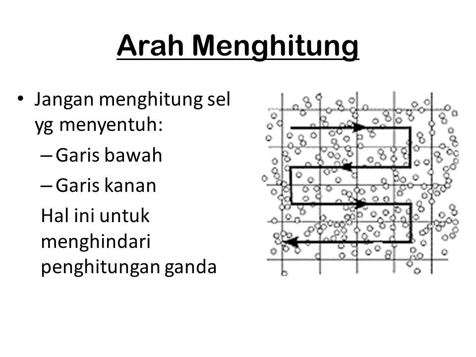 Arah Menghitung Jangan menghitung sel yg menyentuh: – Garis bawah – Garis kanan Hal ini untuk menghindari penghitungan ganda