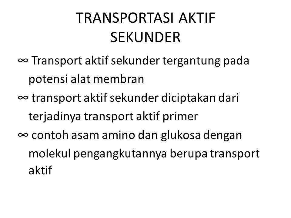 TRANSPORTASI AKTIF SEKUNDER ∞ Transport aktif sekunder tergantung pada potensi alat membran ∞ transport aktif sekunder diciptakan dari terjadinya tran