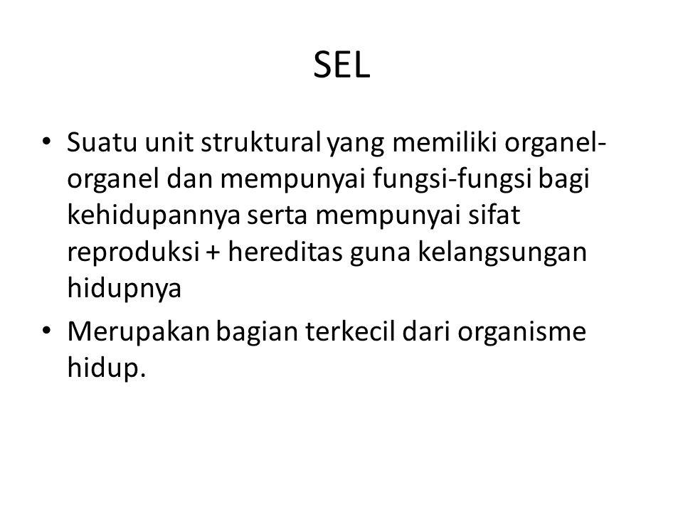 SEL Suatu unit struktural yang memiliki organel- organel dan mempunyai fungsi-fungsi bagi kehidupannya serta mempunyai sifat reproduksi + hereditas gu