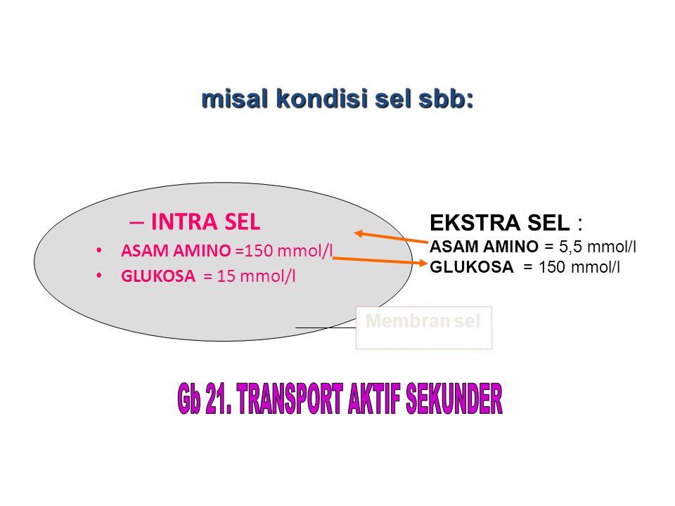 – INTRA SEL ASAM AMINO =150 mmol/l GLUKOSA = 15 mmol/l EKSTRA SEL : ASAM AMINO = 5,5 mmol/l GLUKOSA = 150 mmol/l Membran sel misal kondisi sel sbb: