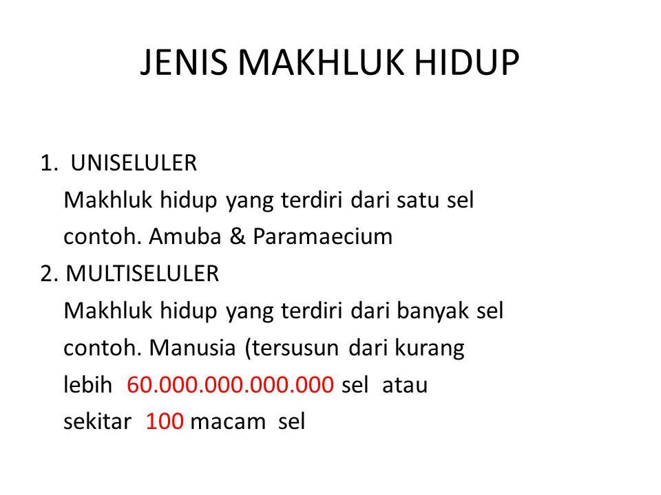 JENIS MAKHLUK HIDUP 1. UNISELULER Makhluk hidup yang terdiri dari satu sel contoh. Amuba & Paramaecium 2. MULTISELULER Makhluk hidup yang terdiri dari