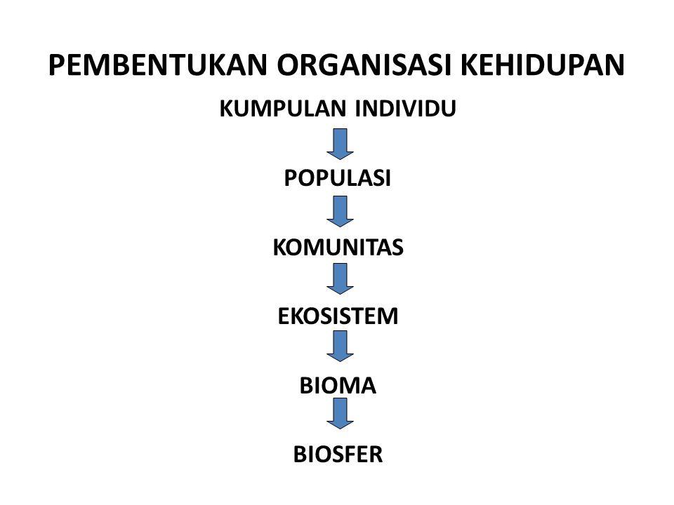 PEMBENTUKAN ORGANISASI KEHIDUPAN KUMPULAN INDIVIDU POPULASI KOMUNITAS EKOSISTEM BIOMA BIOSFER