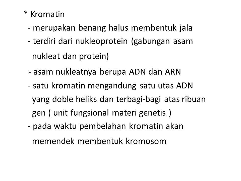 * Kromatin - merupakan benang halus membentuk jala - terdiri dari nukleoprotein (gabungan asam nukleat dan protein) - asam nukleatnya berupa ADN dan A