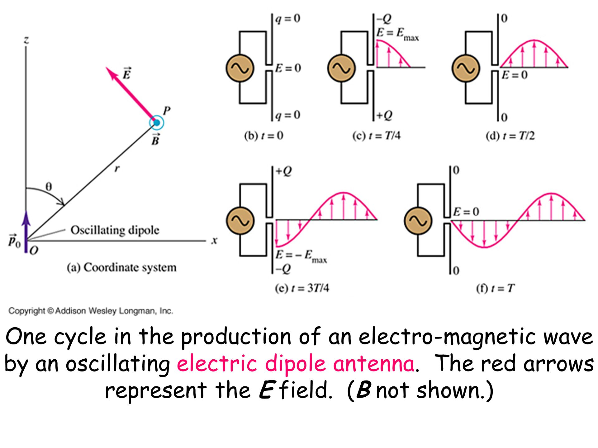 One cycle in the production of an electro-magnetic wave by an oscillating electric dipole antenna. The red arrows represent the E field. (B not shown.