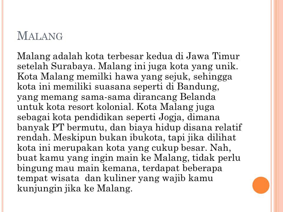 M ALANG Malang adalah kota terbesar kedua di Jawa Timur setelah Surabaya. Malang ini juga kota yang unik. Kota Malang memilki hawa yang sejuk, sehingg