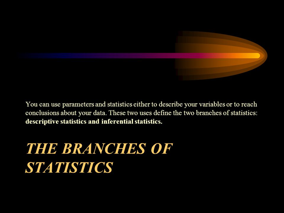 THE BRANCHES OF STATISTICS You can use parameters and statistics either to describe your variables or to reach conclusions about your data.