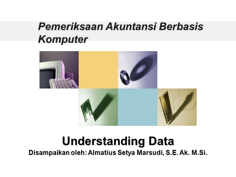 Agenda Pelatihan UNDERSTANDING DATA VERIFY FUNGSI : MEMASTIKAN VALIDITAS DATA  COUNT, TOTAL FUNGSI : MEMASTIKAN KEBENARAN SCOPE DATA  STATISTIC, PROFILE FUNGSI : MENDAPATKAN GAMBARAN UMUM TENTANG DATA  SEQUENCE, DUPLICATES, GAPS FUNGSI : MEMASTIKAN KELENGKAPAN ENTRY TRANSAKSI