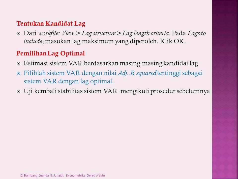 Tentukan Kandidat Lag  Dari workfile: View > Lag structure > Lag length criteria.