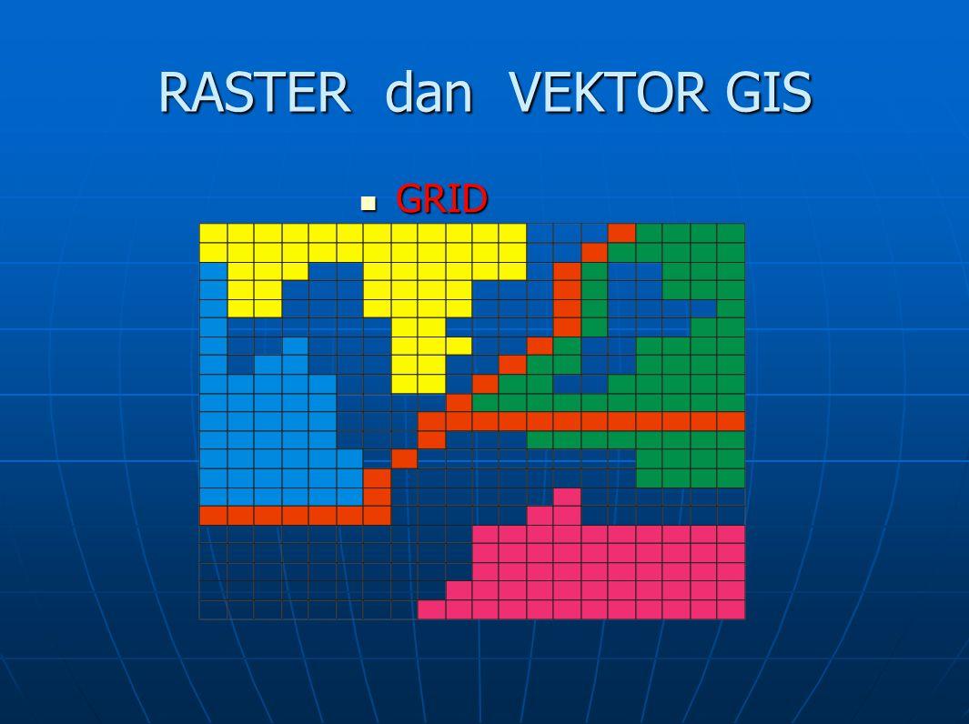 RASTER dan VEKTOR GIS GRID GRID