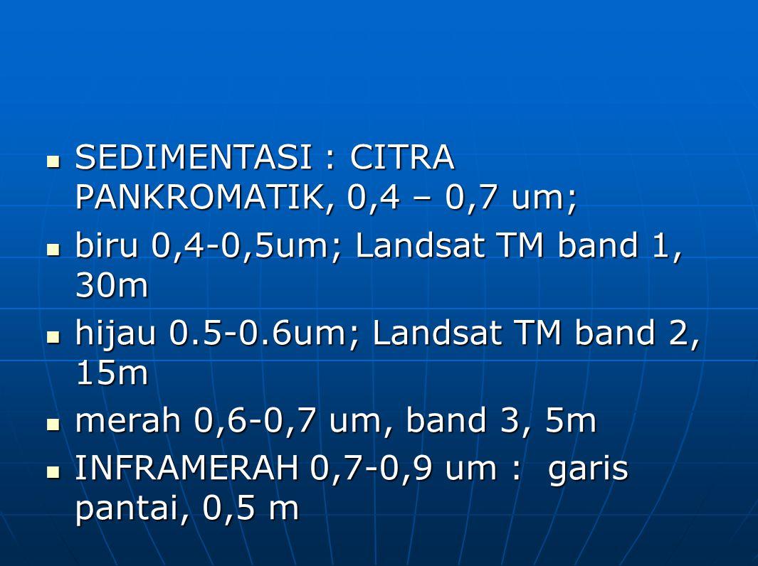SEDIMENTASI : CITRA PANKROMATIK, 0,4 – 0,7 um; SEDIMENTASI : CITRA PANKROMATIK, 0,4 – 0,7 um; biru 0,4-0,5um; Landsat TM band 1, 30m biru 0,4-0,5um; L