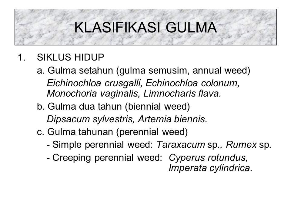 4. KECEPATAN TUMBUH GULMA : Semakin cepat gulma tumbuh – alelopat yang dikeluarkan semakin banyak – pertumbuhan tanaman semakin terhambat – hasil sema