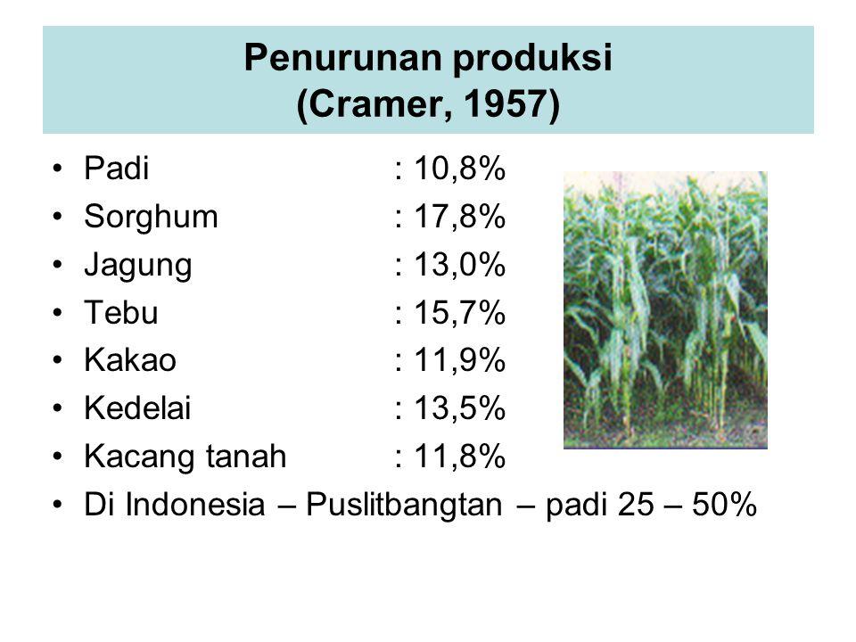 Penurunan produksi (Cramer, 1957) Padi: 10,8% Sorghum: 17,8% Jagung: 13,0% Tebu: 15,7% Kakao: 11,9% Kedelai: 13,5% Kacang tanah: 11,8% Di Indonesia – Puslitbangtan – padi 25 – 50%
