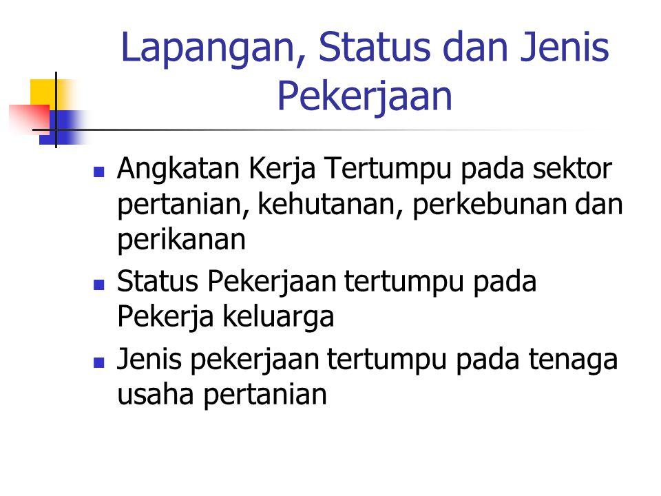 Lapangan, Status dan Jenis Pekerjaan Angkatan Kerja Tertumpu pada sektor pertanian, kehutanan, perkebunan dan perikanan Status Pekerjaan tertumpu pada