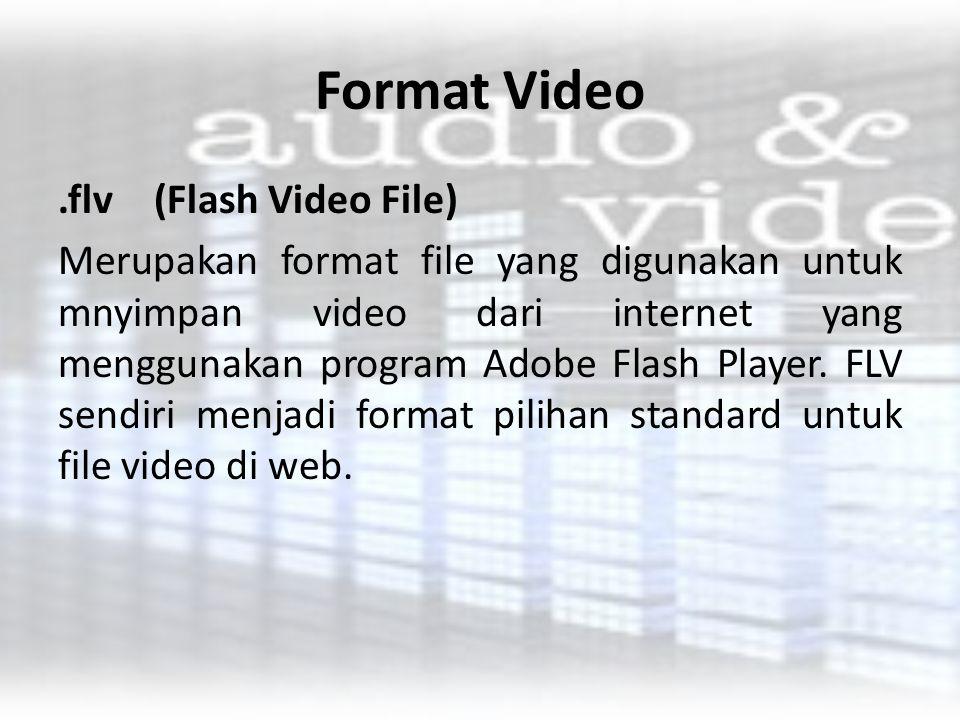 Format Video.flv(Flash Video File) Merupakan format file yang digunakan untuk mnyimpan video dari internet yang menggunakan program Adobe Flash Player
