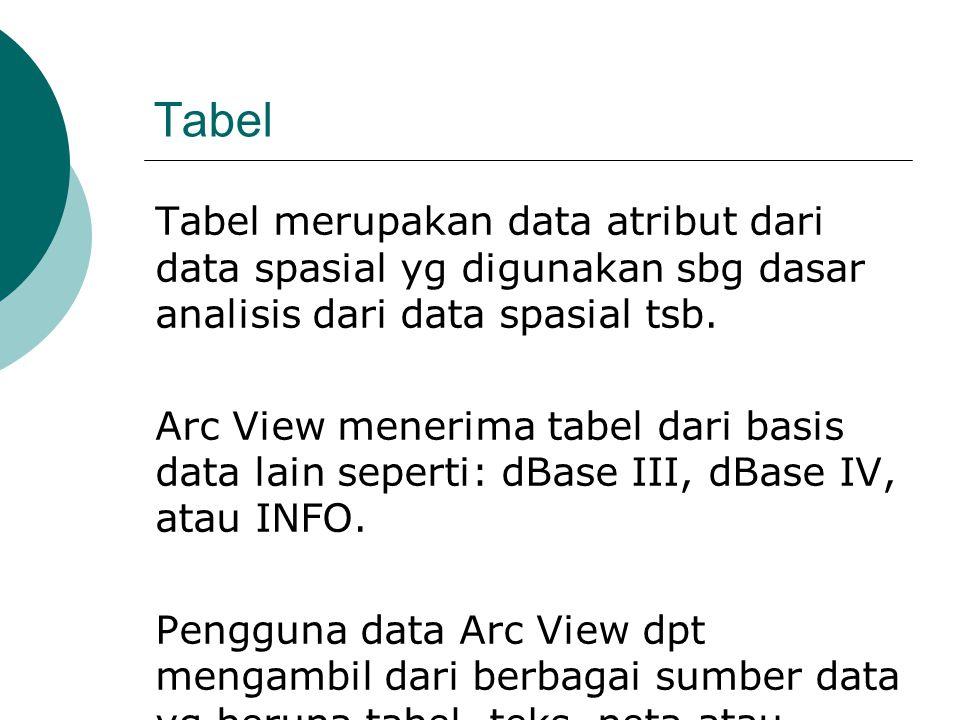Tabel Tabel merupakan data atribut dari data spasial yg digunakan sbg dasar analisis dari data spasial tsb. Arc View menerima tabel dari basis data la