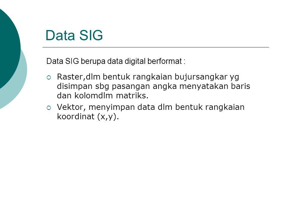 Data SIG  Raster,dlm bentuk rangkaian bujursangkar yg disimpan sbg pasangan angka menyatakan baris dan kolomdlm matriks.  Vektor, menyimpan data dlm