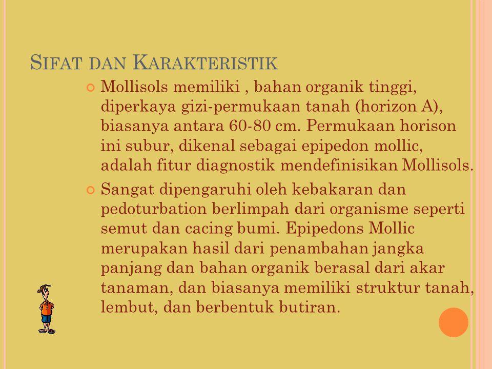 S IFAT DAN K ARAKTERISTIK Mollisols memiliki, bahan organik tinggi, diperkaya gizi-permukaan tanah (horizon A), biasanya antara 60-80 cm. Permukaan ho