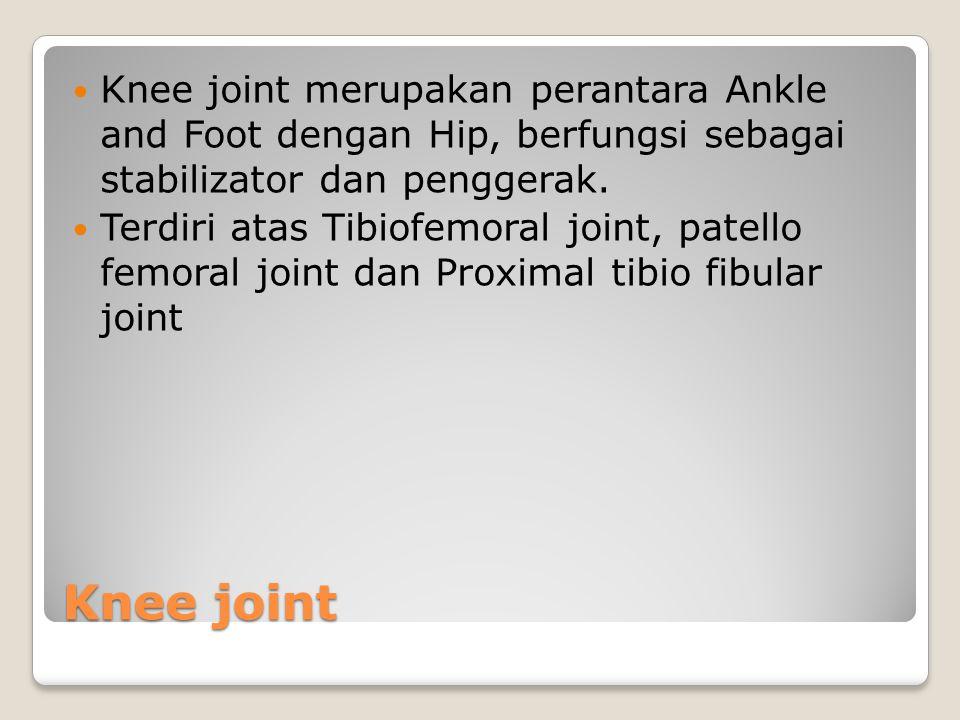 Knee joint Knee joint merupakan perantara Ankle and Foot dengan Hip, berfungsi sebagai stabilizator dan penggerak. Terdiri atas Tibiofemoral joint, pa