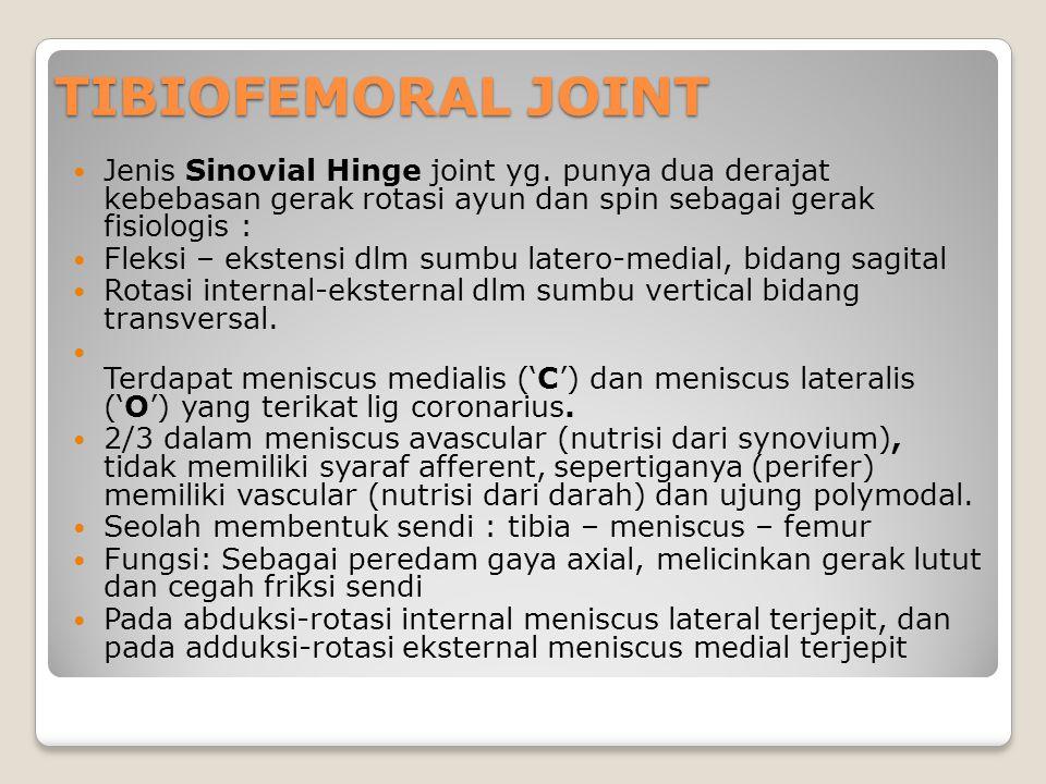 TIBIOFEMORAL JOINT Jenis Sinovial Hinge joint yg. punya dua derajat kebebasan gerak rotasi ayun dan spin sebagai gerak fisiologis : Fleksi – ekstensi