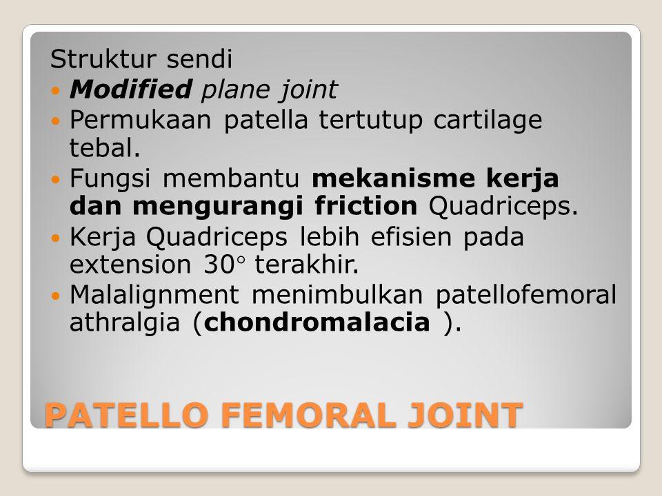 PATELLO FEMORAL JOINT Struktur sendi Modified plane joint Permukaan patella tertutup cartilage tebal. Fungsi membantu mekanisme kerja dan mengurangi f