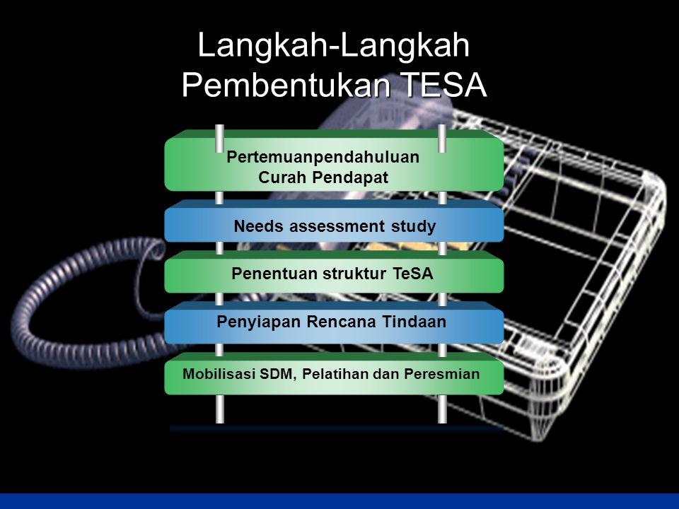 Langkah-Langkah Pembentukan TESA Pertemuanpendahuluan Curah Pendapat Needs assessment study Penentuan struktur TeSA Penyiapan Rencana Tindaan Mobilisa
