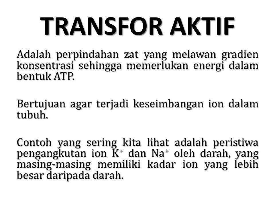 TRANSFOR AKTIF Adalah perpindahan zat yang melawan gradien konsentrasi sehingga memerlukan energi dalam bentuk ATP. Bertujuan agar terjadi keseimbanga