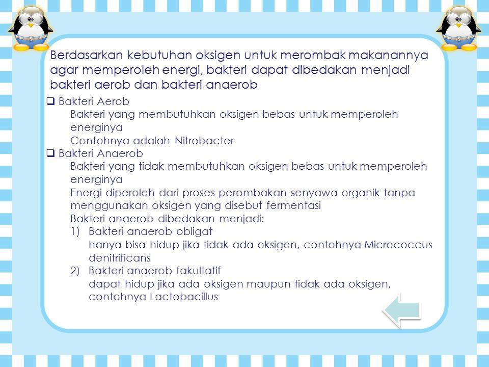 Berdasarkan kebutuhan oksigen untuk merombak makanannya agar memperoleh energi, bakteri dapat dibedakan menjadi bakteri aerob dan bakteri anaerob  Bakteri Aerob Bakteri yang membutuhkan oksigen bebas untuk memperoleh energinya Contohnya adalah Nitrobacter  Bakteri Anaerob Bakteri yang tidak membutuhkan oksigen bebas untuk memperoleh energinya Energi diperoleh dari proses perombakan senyawa organik tanpa menggunakan oksigen yang disebut fermentasi Bakteri anaerob dibedakan menjadi: 1)Bakteri anaerob obligat hanya bisa hidup jika tidak ada oksigen, contohnya Micrococcus denitrificans 2)Bakteri anaerob fakultatif dapat hidup jika ada oksigen maupun tidak ada oksigen, contohnya Lactobacillus