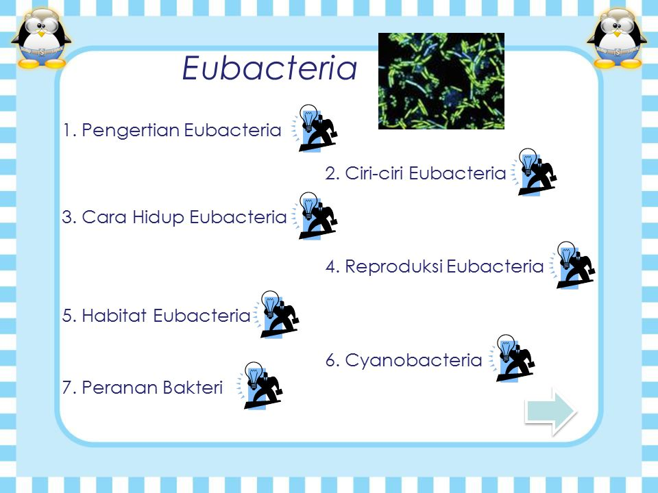 Eubacteria 1.Pengertian Eubacteria 2. Ciri-ciri Eubacteria 3.