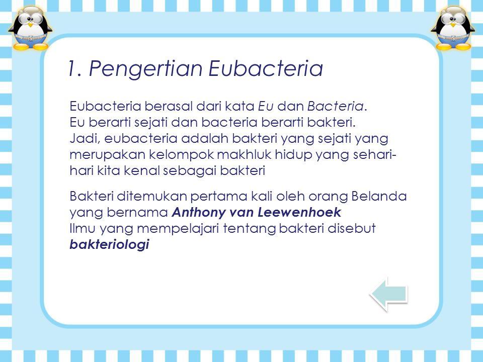 1.Pengertian Eubacteria Eubacteria berasal dari kata Eu dan Bacteria.