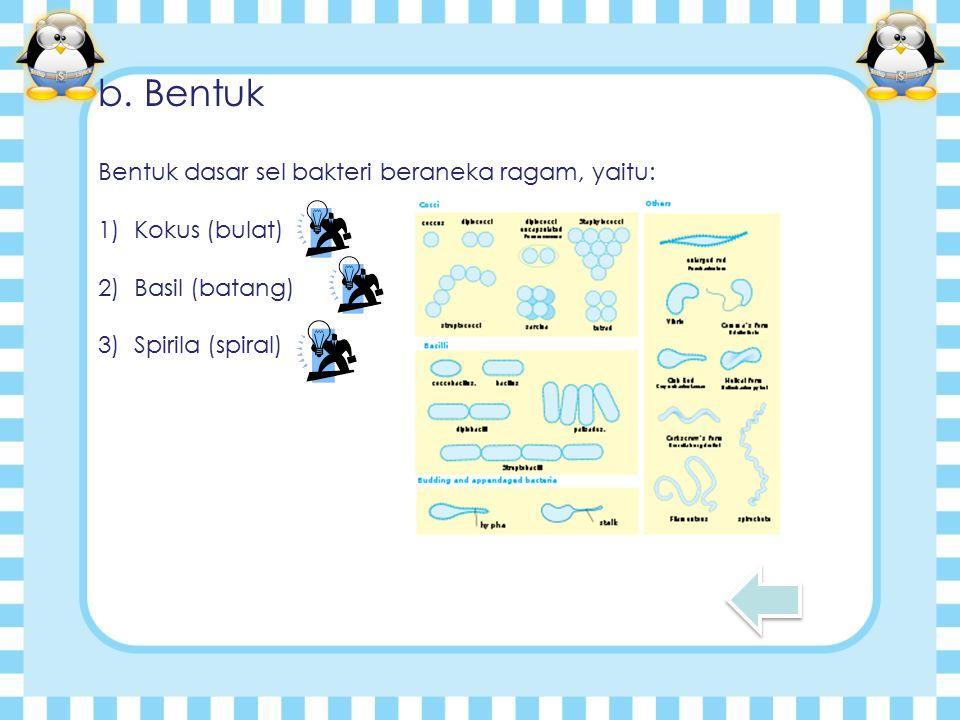 b. Bentuk Bentuk dasar sel bakteri beraneka ragam, yaitu: 1)Kokus (bulat) 2)Basil (batang) 3)Spirila (spiral)
