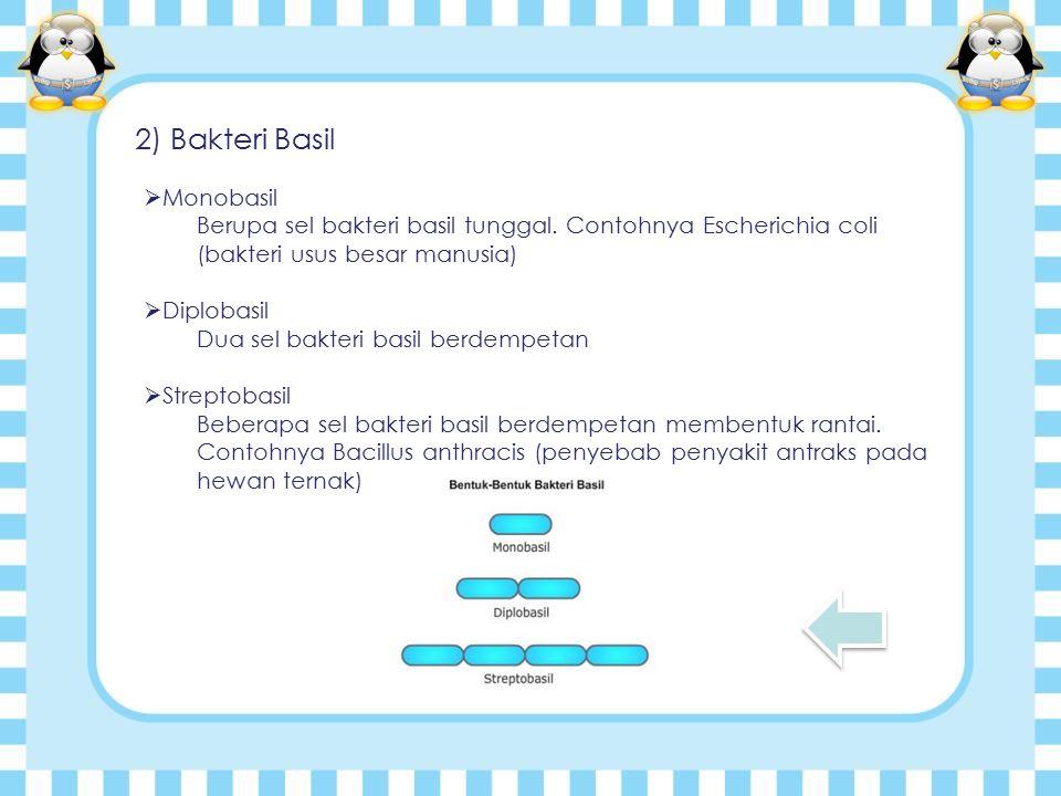 2) Bakteri Basil  Monobasil Berupa sel bakteri basil tunggal.