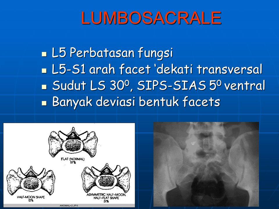 Lumbar spine Kesatuan fungsi: Lumbo Pelvic Hip complex: Thoraco- Lumbo-pelvic-hip rhythm Kesatuan fungsi: Lumbo Pelvic Hip complex: Thoraco- Lumbo-pel