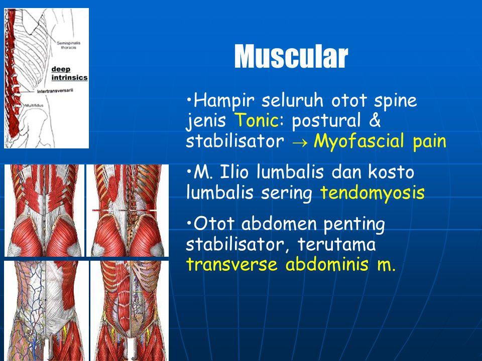 LIGAMENTA PELVIC HIP COMPLEX Ligamenta pd SIJ sangat kuat: Lig sacroiliaca anterior Lig sacroiliaca posterior Mobilitas sangat kecil