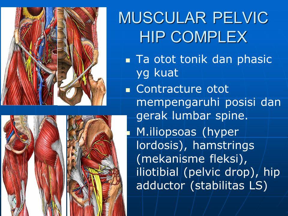 Hampir seluruh otot spine jenis Tonic: postural & stabilisator  Myofascial pain M. Ilio lumbalis dan kosto lumbalis sering tendomyosis Otot abdomen p