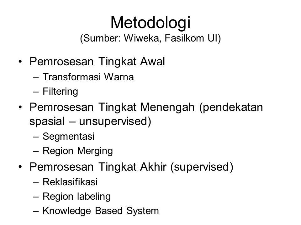 Metodologi (Sumber: Wiweka, Fasilkom UI) Pemrosesan Tingkat Awal –Transformasi Warna –Filtering Pemrosesan Tingkat Menengah (pendekatan spasial – unsupervised) –Segmentasi –Region Merging Pemrosesan Tingkat Akhir (supervised) –Reklasifikasi –Region labeling –Knowledge Based System