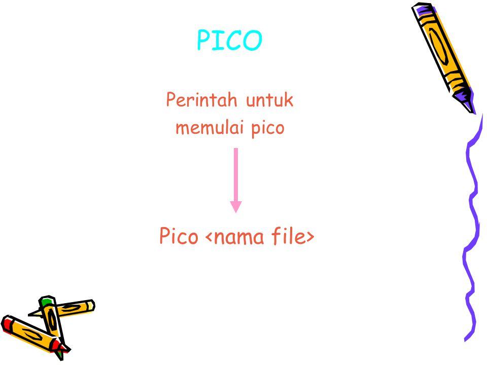 PICO Perintah untuk memulai pico Pico