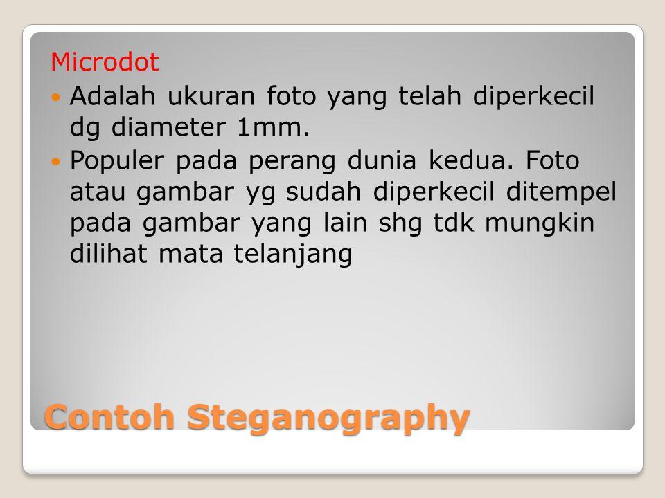 Contoh Steganography Microdot Adalah ukuran foto yang telah diperkecil dg diameter 1mm. Populer pada perang dunia kedua. Foto atau gambar yg sudah dip